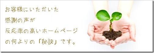 hp_hiketu